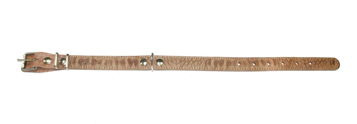 Ошейник Аркон Джунгли ширина 25 мм, длина 40-54 см. од25/20120710Ошейник Аркон Джунгли полностью отвечает требованиям современных мировых кинологических стандартов. Ошейник выполнен из лучшей шорно-седельной кожи, устойчивой к влажности и перепадам температур. Клеевой слой, сверхпрочные нити, крепкие металлические элементы делают ошейники от компании Аркон еще более надежными и долговечными.