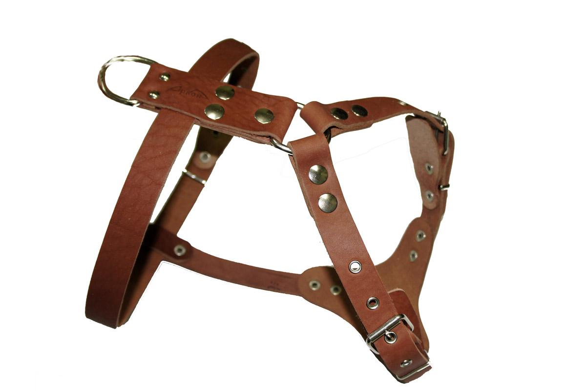 Шлейка для собак Аркон Стандарт №0, водильная, цвет: коньячный, обхват груди 70-87 см0120710Шлейка для собак Аркон Стандарт №0 изготовлена из искусственной кожи. Подходит для пород шарпей, французский бульдог, далматинец и других собак. Крепкие металлические элементы делают ее надежной и долговечной. Шлейка - это альтернатива ошейнику. Правильно подобранная шлейка не стесняет движения питомца, не натирает кожу, поэтому животное чувствует себя в ней уверенно и комфортно. Изделие отличается высоким качеством, удобством и универсальностью.Размер регулируется при помощи пряжек, зафиксированных в одном из отверстий.Обхват шеи: 63-81 см. Обхват груди: 70-87 см.Длина спинки: 14 см. Длина нагрудной лямки: 28 см. Ширина ремней: 2,5 см; 3,5 см.