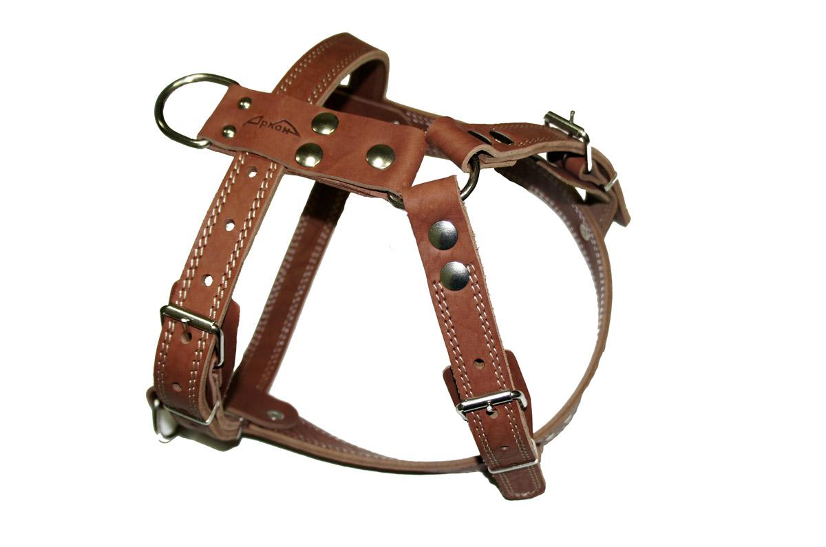 Шлейка Аркон №1, ездовая, цвет: коньячный, ширина 25 мм, длина 70-87 см. ш1ек0120710Шлейка Аркон №1 - это альтернатива ошейнику. Правильно подобранная шлейка не стесняет движения собаки, не натирает кожу, поэтому животное чувствует себя в ней уверенно и комфортно.Ширина: 25 ммДлина: 70 - 87 см