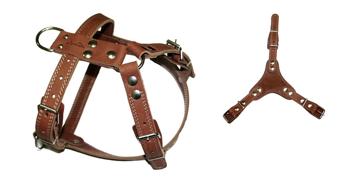 Шлейка Аркон №3 , универсальная, цвет: коньячный, ширина 25 см, длина 90-109 см. ш3ук0120710Шлейка Аркон №3 - это альтернатива ошейнику. Правильно подобранная шлейка не стесняет движения собаки, не натирает кожу, поэтому животное чувствует себя в ней уверенно и комфортно.Ширина: 25 мм Длина: 90 - 109 см