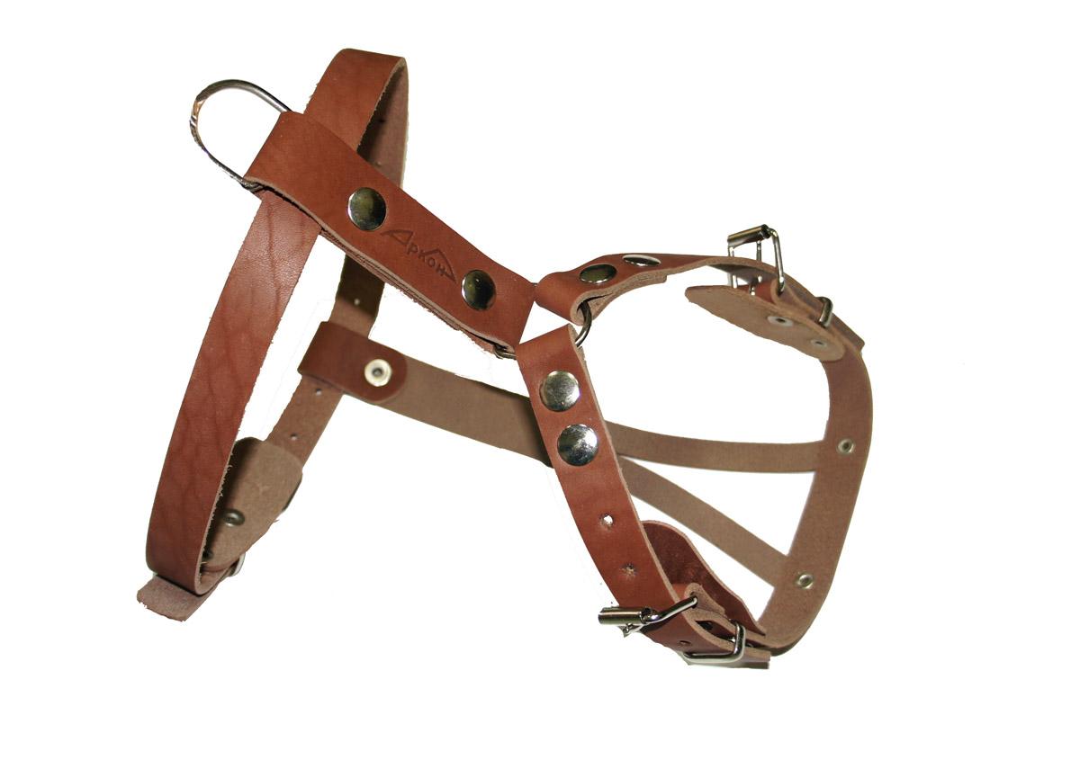 Шлейка для собак Аркон Стандарт, цвет: коньячный, длина 13 смо45/2скШлейка для собак Аркон Стандарт изготовлена из и натуральной кожи. Подходит для пород коккер-спаниель, французский бульдог и других собак. Крепкие металлические элементы делают ее надежной и долговечной. Шлейка - это альтернатива ошейнику. Правильно подобранная шлейка не стесняет движения питомца, не натирает кожу, поэтому животное чувствует себя в ней уверенно и комфортно. Изделие отличается высоким качеством, удобством и универсальностью.Размер регулируется при помощи пряжек, зафиксированных в одном из 12 отверстий.Обхват шеи: 37 - 50 см. Обхват груди: 35 - 62 см.Длина спинки: 13 см. Длина нагрудной лямки: 24,5 см. Ширина ремней: 2,5 см; 2 см; 1,3 см.