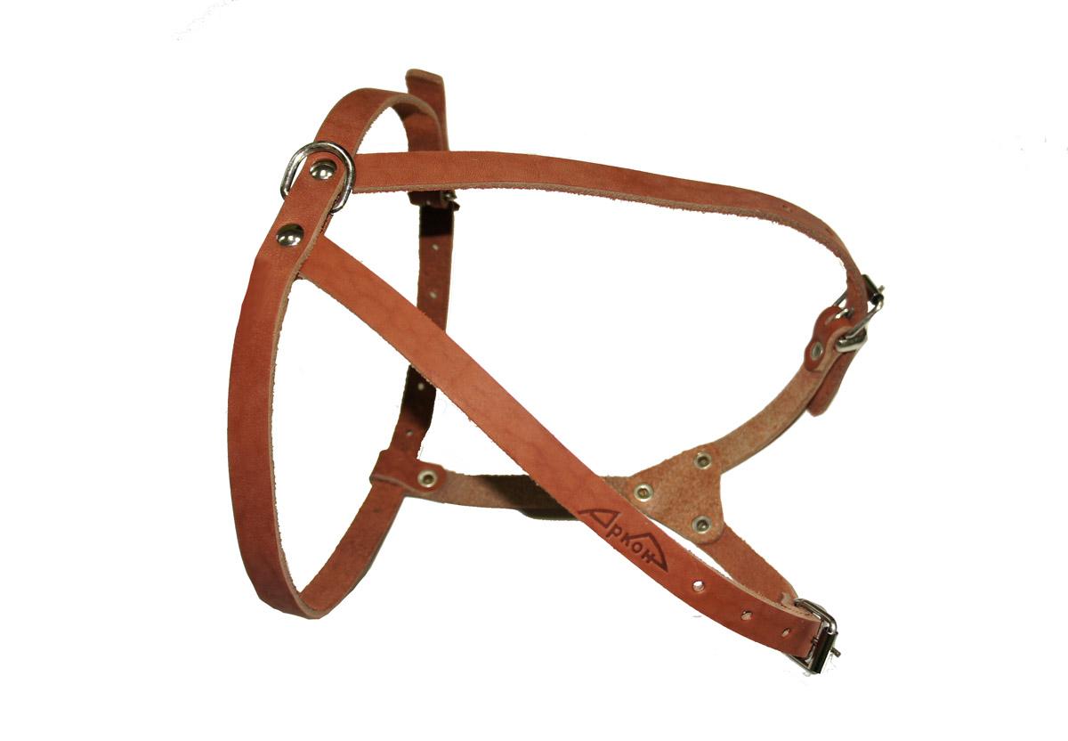 Шлейка Аркон М, цвет: коньячный. шмк0120710Шлейка - это альтернатива ошейнику. Правильно подобранная шлейка от компании «Аркон» не стесняет движения собаки, не натирает кожу, поэтому животное чувствует себя в ней уверенно и комфортно.