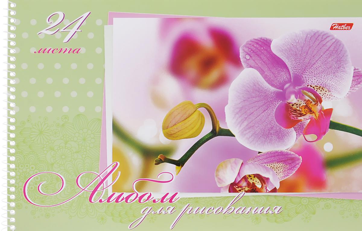 Hatber Альбом для рисования Нежность 24 листа цвет салатовыйС2455-02Альбом для рисования Hatber Нежность порадует вашего малыша и вдохновит его на творчество.Альбом изготовлен из белоснежной бумаги с яркой обложкой из плотного картона, оформленной изображением орхидеи. Внутренний блок альбома, соединенный металлической спиралью, состоит из 24 листов. Высокое качество бумаги позволяет рисовать в альбоме карандашами, фломастерами, акварельными и гуашевыми красками.