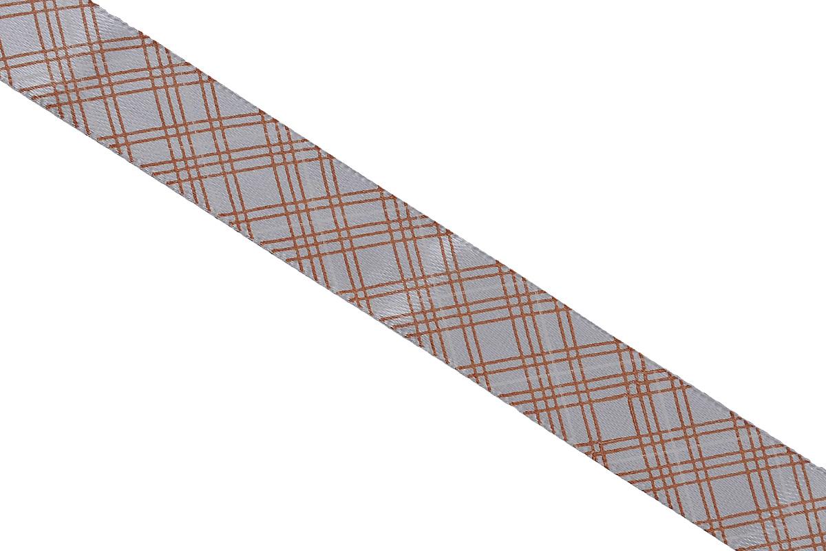 Лента атласная Dekor Line Пересечение, цвет: светло-серый, коричневый, 1,5 х 300 см7714664Атласная лента Dekor Line Пересечение выполнена из высококачественного полиэстера. Область применения атласной ленты весьма широка. Лента предназначена для оформления цветочных букетов, подарочных коробок, пакетов. Кроме того, она с успехом применяется для художественного оформления витрин, праздничного оформления помещений, изготовления искусственных цветов. Ее также можно использовать для творчества в различных техниках, таких как скрапбукинг, оформление аппликаций, для украшения фотоальбомов, подарков, конвертов, фоторамок, открыток и прочего.Ширина ленты: 1,5 см.Длина ленты: 3 м.