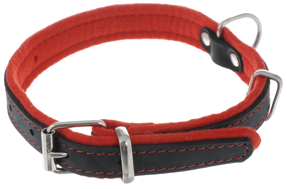 Ошейник для собак Аркон Фетр, цвет: красный, черный, ширина 2 см, длина 27 - 39 см12171996Ошейник Аркон Фетр изготовлен из высококачественной натуральной кожи, устойчивой к влажности и перепадам температур, и фетра. Мягкий фетр предотвратит натирание шеи собаки ошейником и позволит ей с комфортом наслаждаться прогулкой. Размер ошейника регулируется с помощью металлической пряжки, которая фиксируется на одном из 6 отверстий изделия. Ошейник отличается высоким качеством, удобством и универсальностью.Минимальный обхват шеи: 27 см. Максимальный обхват шеи: 39 см. Ширина ошейника: 2 см.