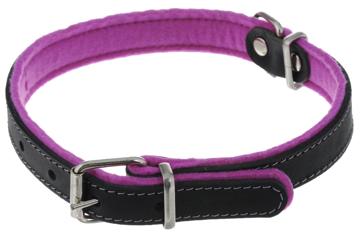 Ошейник для собак Аркон Фетр, цвет: фиолетовый, черный, ширина 2,5 см, длина 57 смоф25фОшейник Аркон Фетр изготовлен из высококачественной натуральной кожи, устойчивой к влажности и перепадам температур, и фетра. Мягкий фетр предотвратит натирание шеи собаки ошейником и позволит ей с комфортом наслаждаться прогулкой. Размер ошейника регулируется с помощью металлической пряжки, которая фиксируется на одном из 6 отверстий изделия. Ошейник отличается высоким качеством, удобством и универсальностью.Минимальный обхват шеи: 35 см. Максимальный обхват шеи: 49 см. Ширина: 2,5 см.