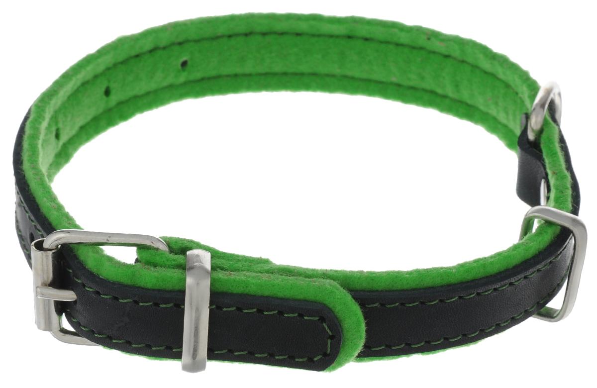 Ошейник для собак Аркон Фетр, цвет: зеленый, черный, ширина 2 см, длина 43,5 смо35унчОшейник Аркон Фетр изготовлен из высококачественной натуральной кожи, устойчивой к влажности и перепадам температур, и фетра. Мягкий фетр предотвратит натирание шеи собаки ошейником и позволит ей с комфортом наслаждаться прогулкой. Размер ошейника регулируется с помощью металлической пряжки, которая фиксируется на одном из 6 отверстий изделия. Ошейник отличается высоким качеством, удобством и универсальностью.Минимальный обхват шеи: 22,5 см. Максимальный обхват шеи: 35 см. Ширина ошейника: 2 см.