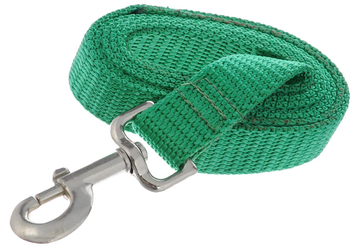 Поводок капроновый для собак Аркон, цвет: зеленый, ширина 2,5 см, длина 1,5 м0120710Поводок для собак Аркон изготовлен из высококачественного цветного капрона и снабжен металлическим карабином. Изделие отличается не только исключительной надежностью и удобством, но и привлекательным современным дизайном.Поводок - необходимый аксессуар для собаки. Ведь в опасных ситуациях именно он способен спасти жизнь вашему любимому питомцу. Иногда нужно ограничивать свободу своего четвероногого друга, чтобы защитить его или себя от неприятностей на прогулке. Длина поводка: 1,5 м.Ширина поводка: 2,5 см.
