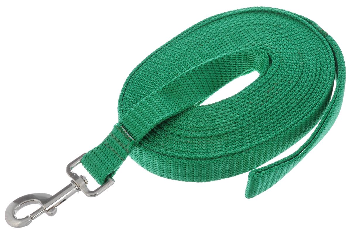 Поводок капроновый для собак Аркон, цвет: зеленый, ширина 2,5 см, длина 7 моф35кПоводок для собак Аркон изготовлен из высококачественного цветного капрона и снабжен металлическим карабином. Изделие отличается не только исключительной надежностью и удобством, но и привлекательным современным дизайном.Поводок - необходимый аксессуар для собаки. Ведь в опасных ситуациях именно он способен спасти жизнь вашему любимому питомцу. Иногда нужно ограничивать свободу своего четвероногого друга, чтобы защитить его или себя от неприятностей на прогулке. Длина поводка: 7 м.Ширина поводка: 2,5 см.