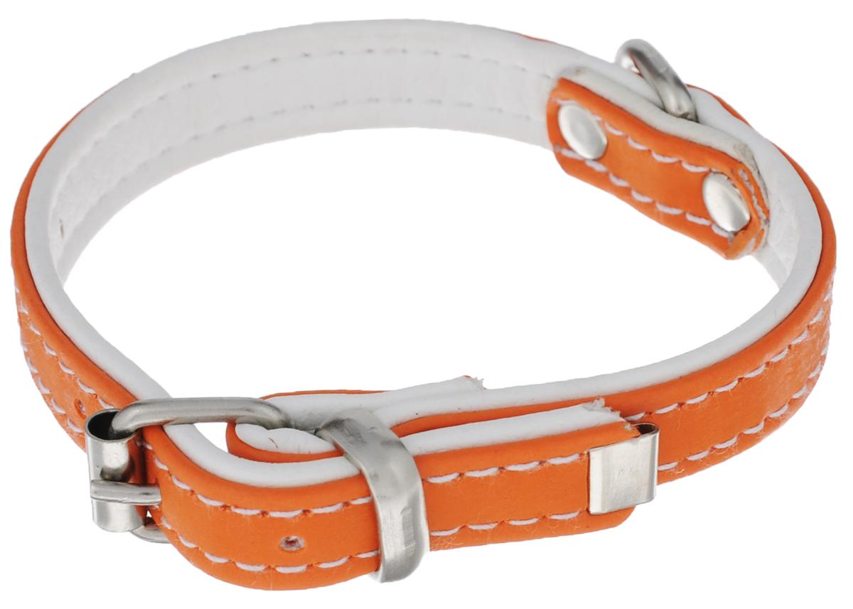 Ошейник Аркон Техно, цвет: оранжевый, белый, ширина 1,2 см, длина 28 см0120710Ошейник Аркон Техно изготовлен из высококачественной искусственной кожи, устойчивой к влажности и перепадам температур. Клеевой слой, сверхпрочные нити, крепкие металлические элементы делают ошейник надежным и долговечным.Изделие отличается высоким качеством, удобством и универсальностью.Размер ошейника регулируется при помощи пряжки, зафиксированной на одном из 5 отверстий. Минимальный обхват шеи: 18 см. Максимальный обхват шеи: 24 см. Ширина: 1,2 см.