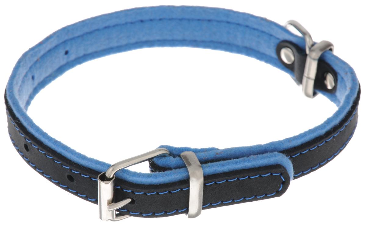 Ошейник для собак Аркон Фетр, цвет: черный, голубой, ширина 1,6 см, длина 32 см. оф16у12плкОшейник Аркон Фетр изготовлен из высококачественной натуральной кожи, устойчивой к влажности и перепадам температур, и фетра. Мягкий фетр предотвратит натирание шеи собаки ошейником и позволит ей с комфортом наслаждаться прогулкой.Клеевой слой, сверхпрочные нити, крепкие металлические элементы делают ошейник надежным и долговечным.Изделие отличается высоким качеством, удобством и универсальностью.Размер ошейника регулируется при помощи пряжки, зафиксированной на одном из 5 отверстий. Минимальный обхват шеи: 21 см. Максимальный обхват шеи: 28 см. Ширина: 1,6 см.