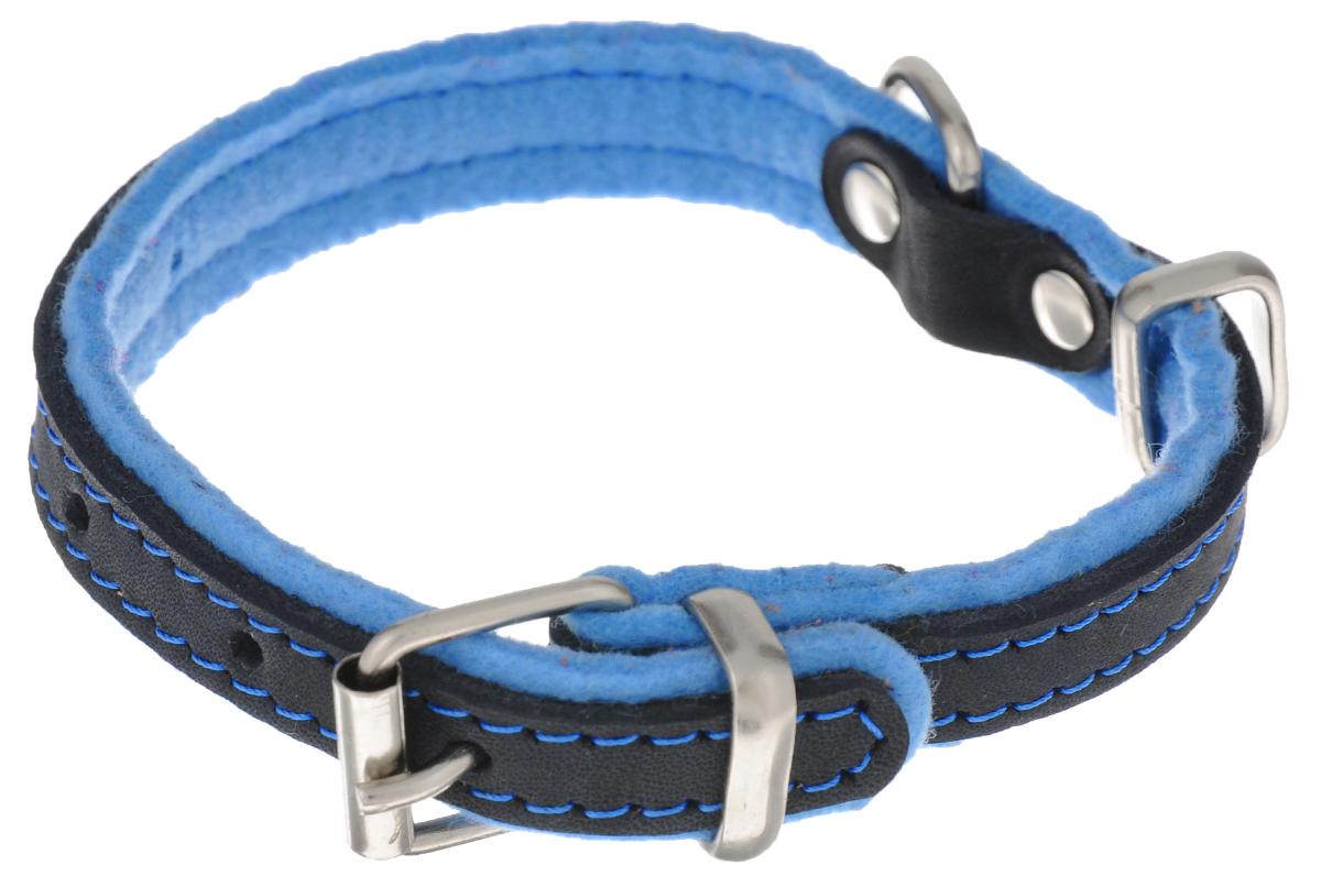 Ошейник для собак Аркон Фетр, цвет: черный, голубой, ширина 2 см, длина 43 см. оф200120710Ошейник Аркон Фетр изготовлен из высококачественной натуральной кожи, устойчивой к влажности и перепадам температур, и фетра. Мягкий фетр предотвратит натирание шеи собаки ошейником и позволит ей с комфортом наслаждаться прогулкой.Клеевой слой, сверхпрочные нити, крепкие металлические элементы делают ошейник надежным и долговечным.Изделие отличается высоким качеством, удобством и универсальностью.Размер ошейника регулируется при помощи пряжки, зафиксированной на одном из 6 отверстий. Минимальный обхват шеи: 25 см. Максимальный обхват шеи: 36 см. Ширина: 2 см.