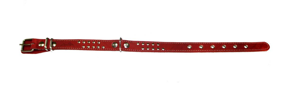 Ошейник Аркон Стандарт, цвет: красный, ширина 2,5 см, длина 57 смо25пкрОшейник Аркон Стандарт с подкладкой из мягкой ткани изготовлен из кожи, устойчивой к влажности и перепадам температур. Клеевой слой, сверхпрочные нити, крепкие металлические элементы делают ошейник надежным и долговечным.Изделие отличается высоким качеством, удобством и универсальностью.Размер ошейника регулируется при помощи пряжки, зафиксированной на одном из 6 отверстий. Минимальный обхват шеи: 38 см. Максимальный обхват шеи: 52 см. Ширина: 2,5 см.
