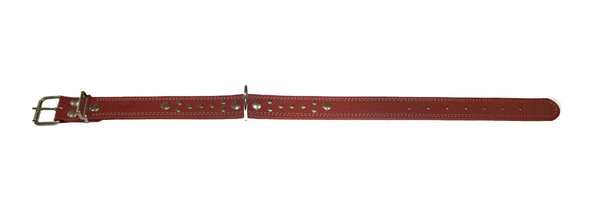 Ошейник Аркон Стандарт, цвет: коньячный, ширина 3,5 см, длина 71 см. о35с101246Ошейник Аркон Стандарт изготовлен из натуральной кожи, устойчивой к влажности и перепадам температур. Клеевой слой, сверхпрочные нити, крепкие металлические элементы делают ошейник надежным и долговечным.Изделие отличается высоким качеством, удобством и универсальностью.Размер ошейника регулируется при помощи пряжки, зафиксированной на одном из 7 отверстий. Минимальный обхват шеи: 48 см. Максимальный обхват шеи: 65 см. Ширина: 3,5 см.Длина ошейника: 71 см.