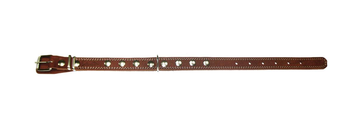 Ошейник Аркон Стандарт, цвет: коньячный, ширина 2,5 см, длина 57 см. о25/20120710Ошейник Аркон Стандарт изготовлен из кожи, устойчивой к влажности и перепадам температур. Клеевой слой, сверхпрочные нити, крепкие металлические элементы делают ошейник надежным и долговечным.Изделие отличается высоким качеством, удобством и универсальностью.Размер ошейника регулируется при помощи пряжки, зафиксированной на одном из 6 отверстий. Минимальный обхват шеи: 38 см. Максимальный обхват шеи: 52 см. Ширина: 2,5 см.