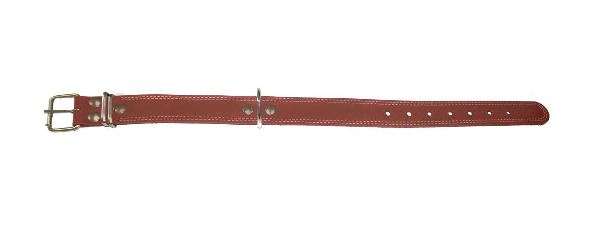 Ошейник Аркон Стандарт, цвет: коньячный, ширина 3,5 см, длина 62 см. о35/1к0120710Ошейник Аркон Стандарт изготовлен из кожи, устойчивой к влажности и перепадам температур. Клеевой слой, сверхпрочные нити, крепкие металлические элементы делают ошейник надежным и долговечным.Изделие отличается высоким качеством, удобством и универсальностью.Размер ошейника регулируется при помощи пряжки, зафиксированной на одном из 6 отверстий. Минимальный обхват шеи: 41 см. Максимальный обхват шеи: 55 см. Ширина: 3,5 см.