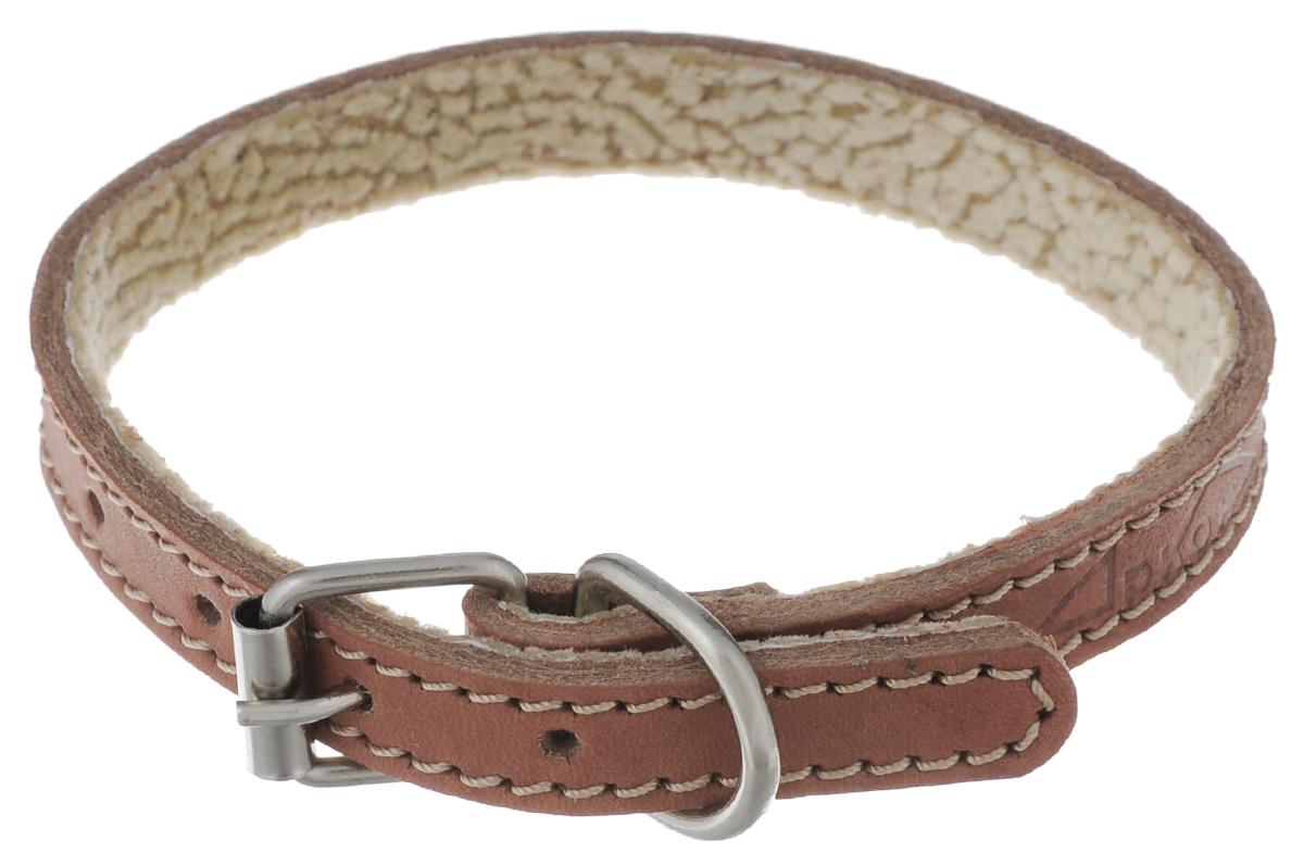 Ошейник для собак Аркон Стандарт, цвет: коньячный, ширина 1,4 см, длина 32 см. о14п0120710Ошейник для собак Аркон Стандарт изготовлен из натуральной кожи, устойчивой к влажности и перепадам температур. Клеевой слой, сверхпрочные нити, крепкие металлические элементы делают ошейник надежным и долговечным. На стороне, соприкасающейся с шеей, имеется подкладка из мягкой ткани.Изделие отличается высоким качеством, удобством и универсальностью.Размер ошейника регулируется при помощи пряжки, зафиксированной на одном из 6 отверстий. Минимальный обхват шеи: 20,5 см. Максимальный обхват шеи: 28,5 см. Ширина ошейника: 1,4 см.Длина ошейника: 32 см.