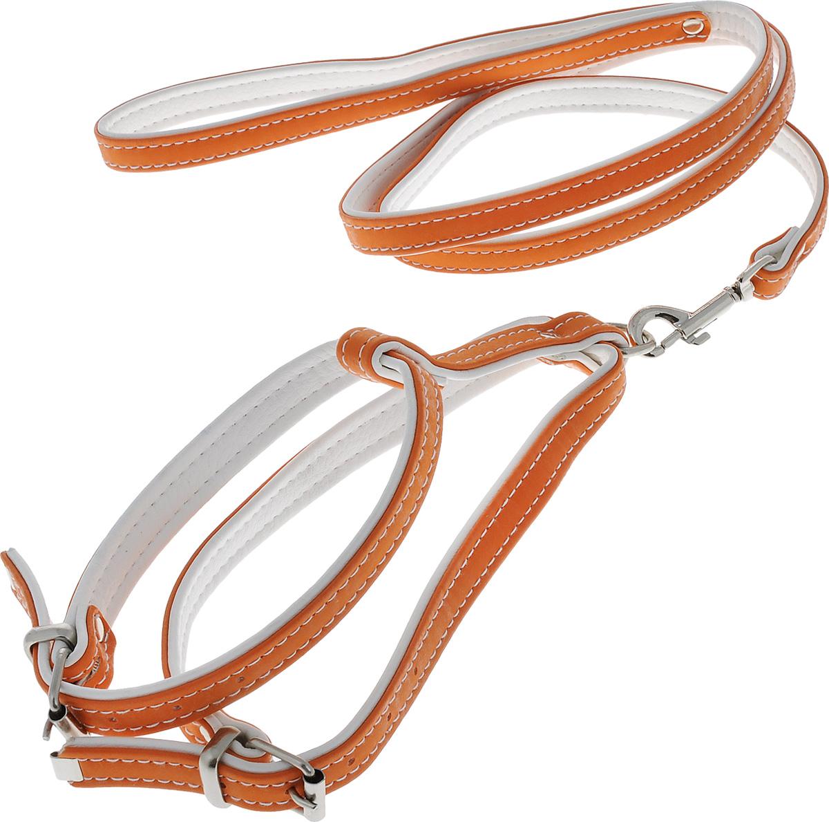 Комплект для животных Аркон Техно, цвет: оранжевый, белый, 2 предмета. кт1512171996Комплект для животных Аркон Техно состоит из шлейки и поводка. Изделия изготовлены из искусственной кожи, фурнитура - из сверхпрочных сплавов металла. Надежная конструкция обеспечит вашему четвероногому другу комфортную и безопасную прогулку.Такой комплект подходит как для кошек, так и для мелких пород собак. Длина поводка: 1,1 м.Ширина поводка: 1,4 см.Обхват шеи: 27 - 33 см. Обхват груди: 37 - 44 см.Длина спинки: 11 см.Ширина ремней: 1,5 см; 1,6 см.