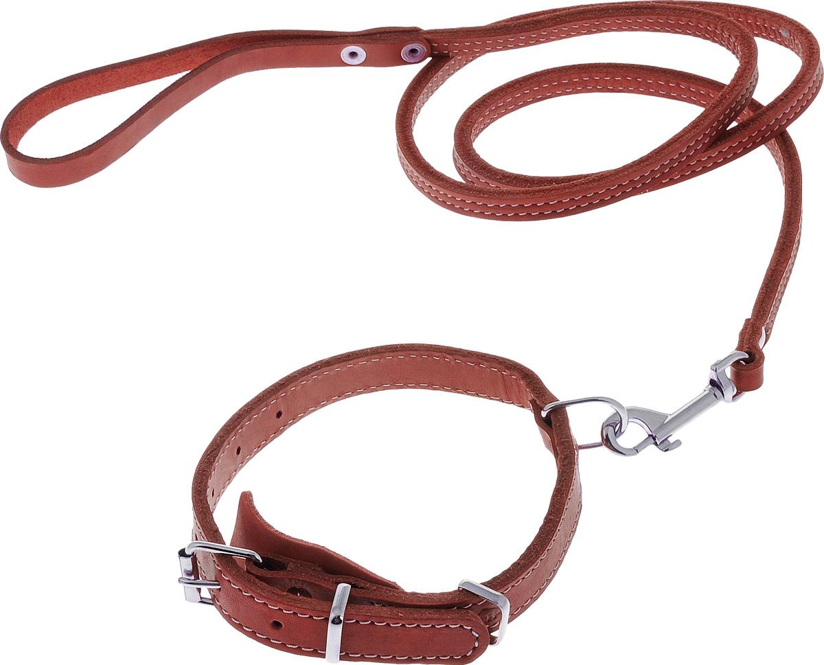 Комплект для собак Аркон Стандарт №6, цвет: красный, 2 предметао14фКомплект для животных Аркон Стандарт №6 состоит из ошейника и поводка. Изделия изготовлены из высококачественного металла и натуральной кожи. Надежная конструкция обеспечит вашему четвероногому другу комфортную и безопасную прогулку.Такой комплект подходит для мелких и средних пород собак. Длина поводка: 1,4 м.Ширина поводка: 1 см.Обхват шеи (для ошейника): 32 - 44 см.Ширина ремня ошейника: 2 см.