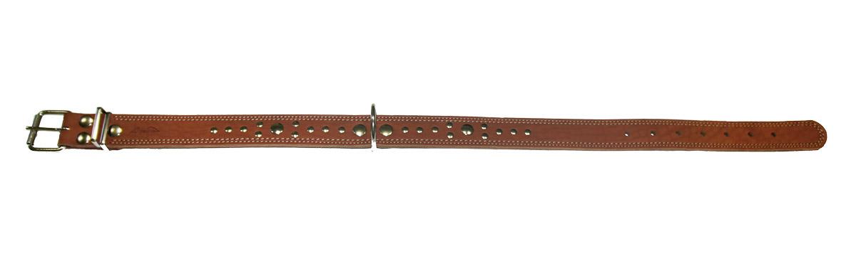Ошейник Аркон Стандарт, цвет: коньячный, ширина 3,5 см, длина 81 см12171996Ошейник Аркон Стандарт изготовлен из натуральной кожи, устойчивой к влажности и перепадам температур. Клеевой слой, сверхпрочные нити, крепкие металлические элементы делают ошейник надежным и долговечным.Изделие отличается высоким качеством, удобством и универсальностью.Размер ошейника регулируется при помощи пряжки, зафиксированной на одном из 7 отверстий. Минимальный обхват шеи: 58 см. Максимальный обхват шеи: 75 см. Ширина: 3,5 см.