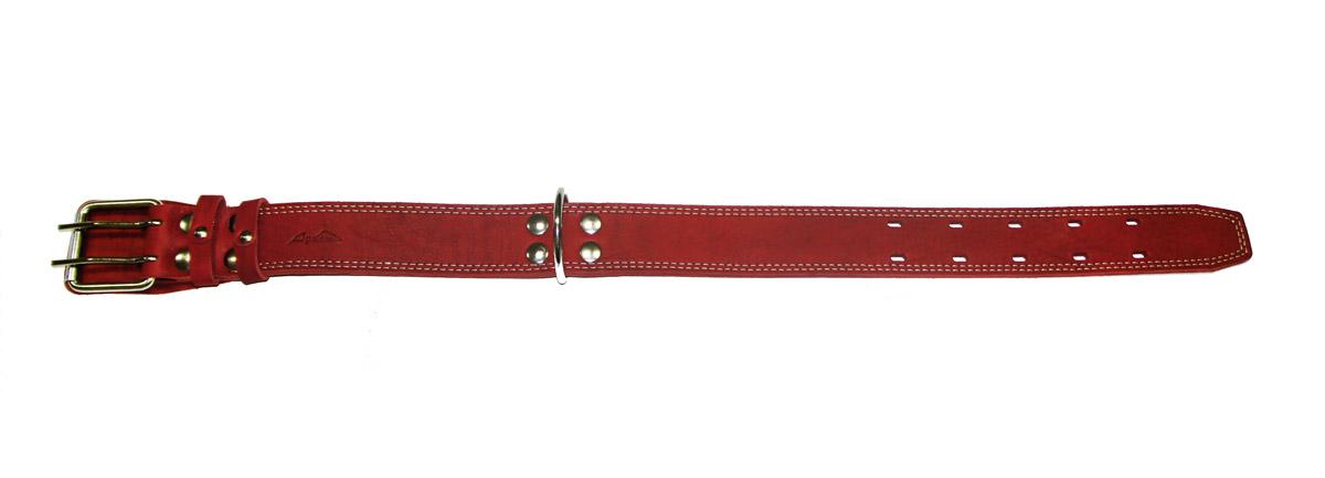 Ошейник Аркон Стандарт, цвет: красный, ширина 4,5 см, длина 77 смо45/2дкрОшейник Аркон Стандарт изготовлен из кожи, устойчивой к влажности и перепадам температур. Клеевой слой, сверхпрочные нити, крепкие металлические элементы делают ошейник надежным и долговечным.Изделие отличается высоким качеством, удобством и универсальностью.Размер ошейника регулируется при помощи пряжки, зафиксированной на одной из 5 двойных отверстий. Минимальный обхват шеи: 54 см. Максимальный обхват шеи: 69 см. Ширина: 4,5 см.