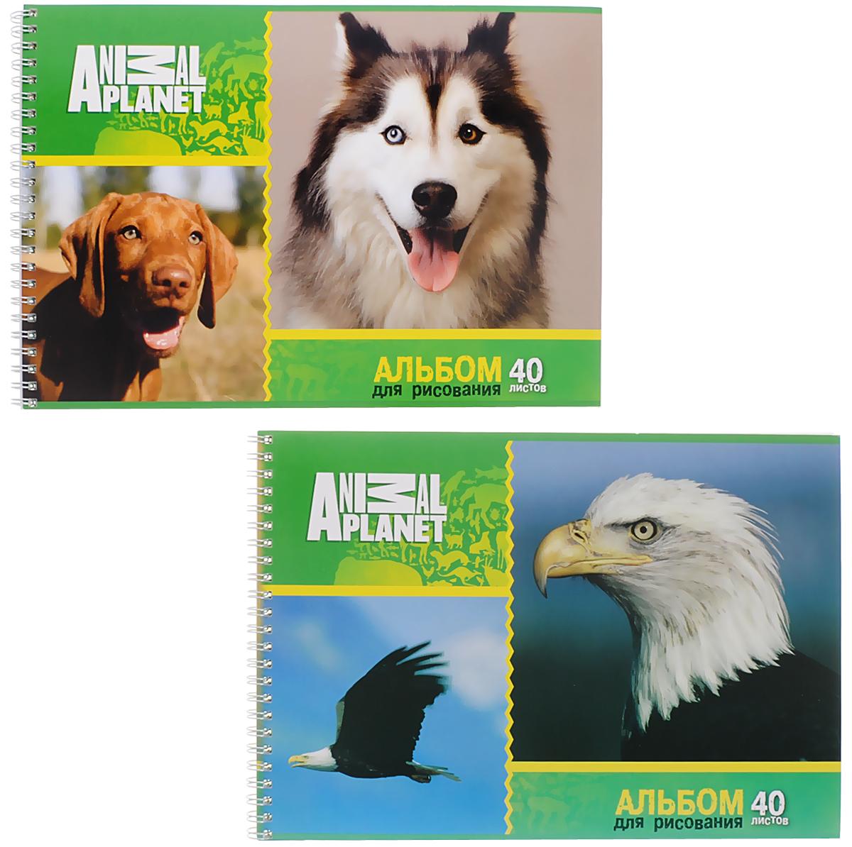 Action! Набор альбомов для рисования Орел и собаки 40 листов 2 шт0703415Альбом для рисования Action! Орел и собаки обязательно порадует маленького художника и вдохновит его на творчество. Альбом изготовлен из белоснежной бумаги с яркой обложкой из плотного картона. Внутренний блок альбома на гребне. Один альбом содержит 40 листов. В набор входят два альбома.