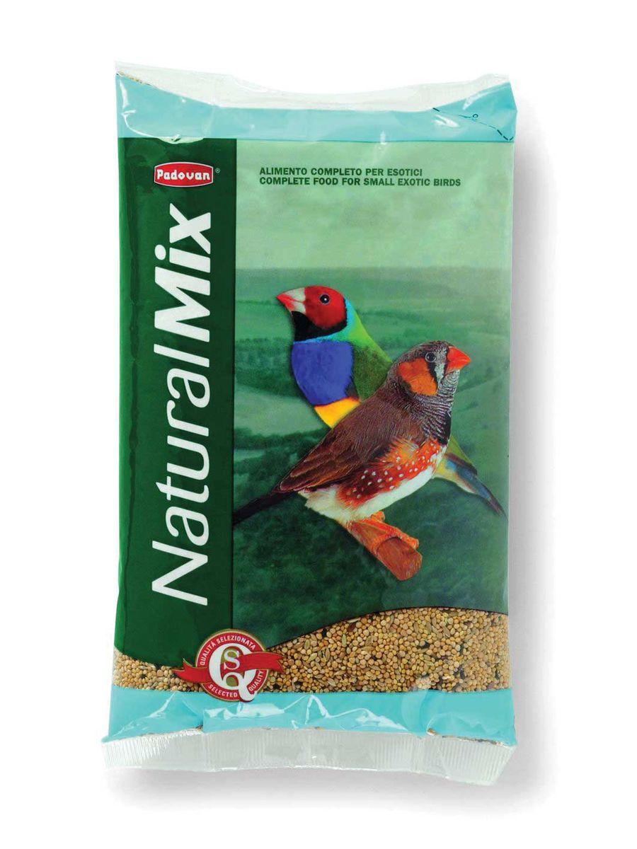 Корм Padovan Naturalmix Esotici для экзотических птиц, 1кг0120710Высококачественный основной полнорационный корм для экзотических птиц.Состав: итальянское просо 41%, желтое просо 40%, канареечное семя 13%, льняное семя 3%, масличный нуг (гвизоция абиссинская) 3%.