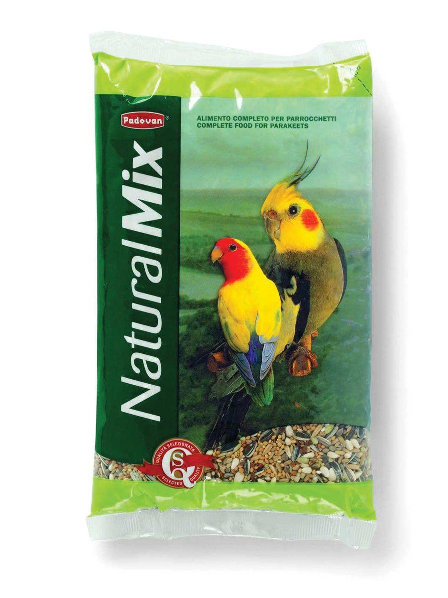 Корм Padovan Naturalmix Parrocchetti для средних попугаев, 850 г0120710Специально подобранная смесь из просеянных и провеянных семян и зерен, отобранных и смешанных в пропорциях, для круглогодичного питания средних попугаев.Состав: белое, красное и жёлтое пшено - 27,7%, Семена подсолнечника - 18,33% канареечное семя - 11.7%, овёс шелушёный - 16%, льняное семя - 6%, Итальянское просо - 6%.