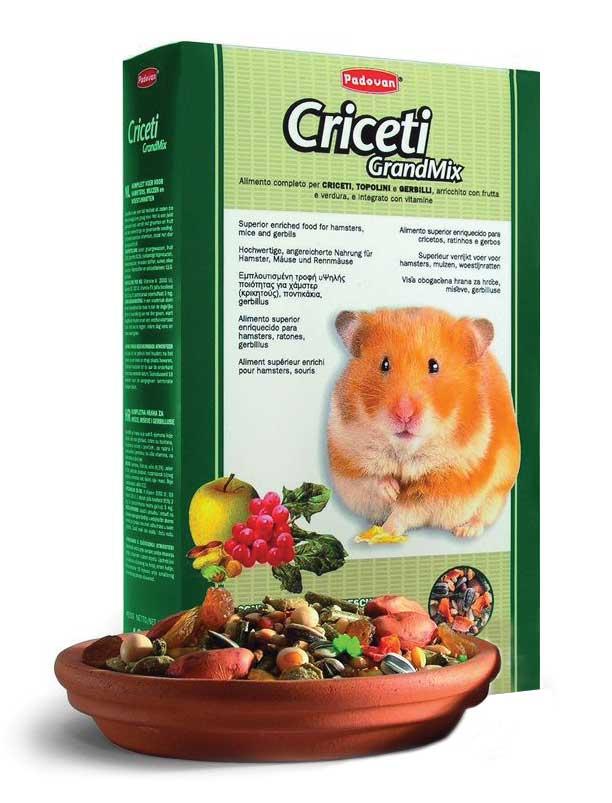Корм Padovan Grandmix Criceti для хомяков и мышей, 1 кг0120710Комплексный, высококачественный основной корм для мышей, хомяков и песчанок. Обогащен фруктами и овощами, витаминами и минералами.Состав: подсолнечное семя 6.3%, рис 6.3%, пшеница 18.9%, овёс лущёный, желтое просо, кукуруза, арахис, морковь, плоды рожкового дерева, виноград, экструдированные кукуруза и пищевой краситель, витамины.