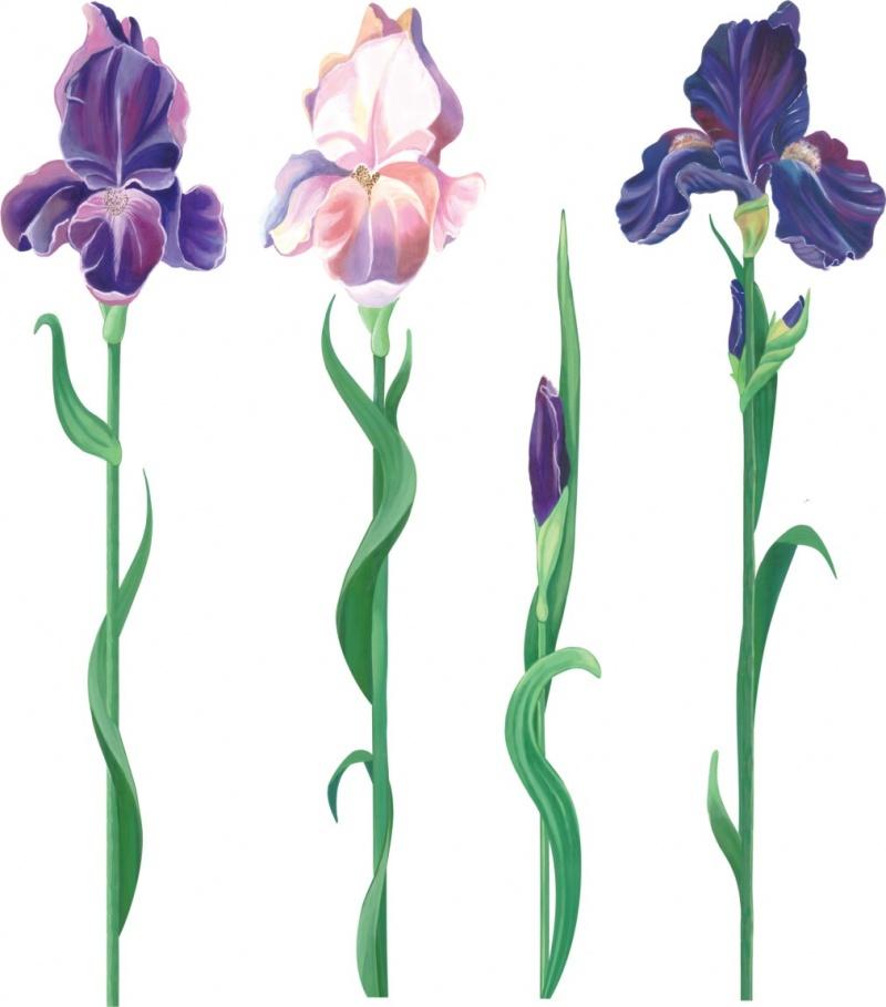 Украшение для стен и предметов интерьера ИрисыFS-80418Украшение для стен и предметов интерьера Ирисы, состоящее из 16 самоклеющихся элементов, образующие четыре цветка ириса, поможет вам украсить интерьер вашего дома и проявить индивидуальность. Общая длина украшения 165 сантиметров. Декоретто - уникальный способ легко и быстро оживить интерьер, добавить в него уют и радость. Для вас открываются безграничные возможности проявить творчество и фантазию, придумать оригинальный дизайн, придать новый вид стенам и мебели. В коллекции Декоретто вы найдете украшения для любых городских и дачных интерьеров: детских, гостиных, спален, кухонь, ванных комнат. Преимущество Декоретто: изготовлены из экологически безопасной самоклеющейся пленки с водоотталкивающей поверхностью;быстро и легко наклеиваются на обои, крашеные стены, дерево, керамическую плитку, металл, стекло, пластик;при необходимости удобно снимаются, не оставляют следов и не повреждая поверхность (кроме бумажных обоев);специальный слой защищает поверхность от влаги и выгорания. Характеристики: Материал: экологически безопасная самоклеющаяся пленка. Размер упаковки: 50 см х 75 см. Страна: Россия. Артикул: Д-2026.