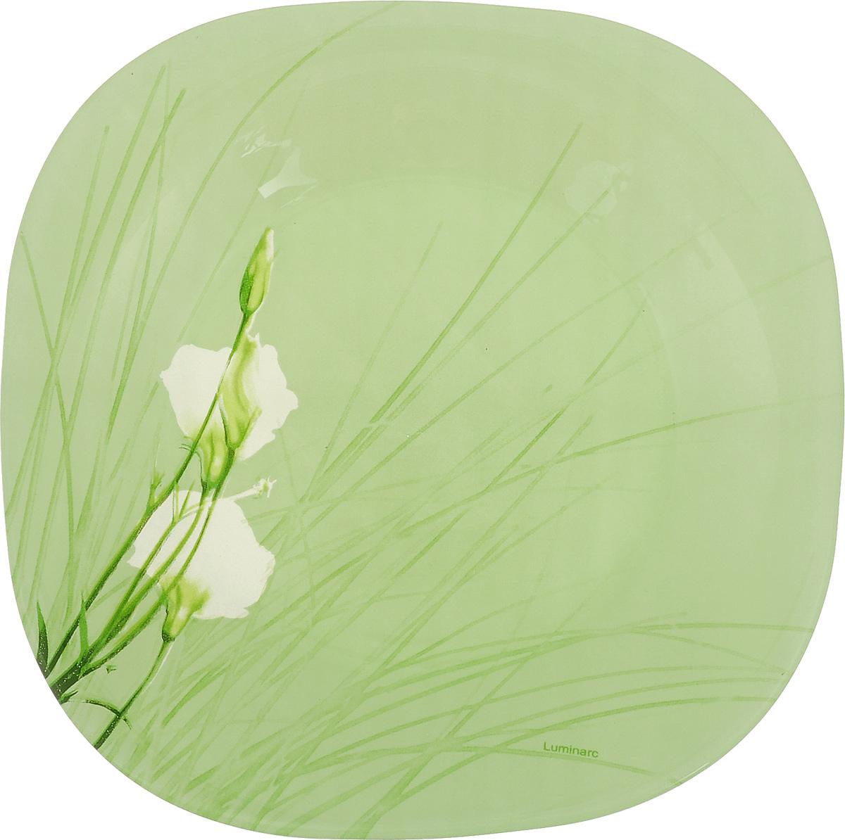 Тарелка десертная Luminarc Sofiane, цвет: зеленый, 18 х 18 см115510Десертная тарелка Luminarc Sofiane, изготовленная из ударопрочного стекла, декорирована ярким рисунком. Такая тарелка прекрасно подходит как для торжественных случаев, так и для повседневного использования. Идеальна для подачи десертов, пирожных, тортов и многого другого. Она прекрасно оформит стол и станет отличным дополнением к вашей коллекции кухонной посуды. Размер тарелки (по верхнему краю): 18 см.