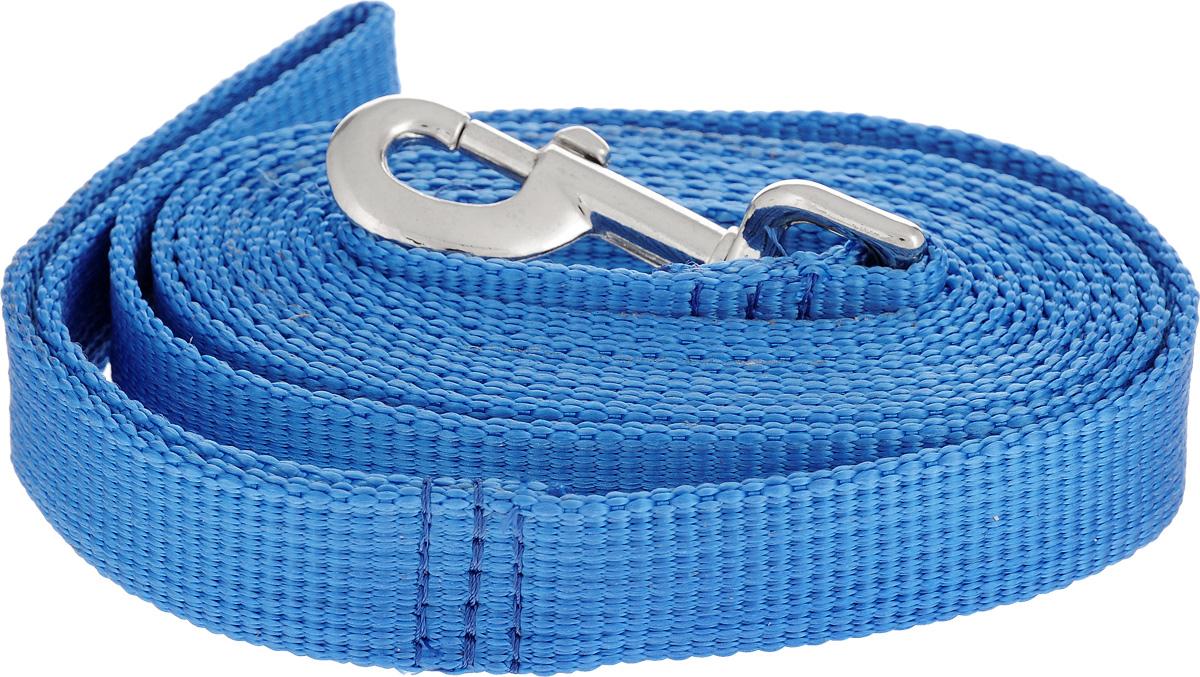 Поводок капроновый для собак Аркон, цвет: темно-голубой, ширина 2,5 см, длина 3 м0120710Поводок для собак Аркон изготовлен из высококачественного цветного капрона и снабжен металлическим карабином. Изделие отличается не только исключительной надежностью и удобством, но и привлекательным современным дизайном.Поводок - необходимый аксессуар для собаки. Ведь в опасных ситуациях именно он способен спасти жизнь вашему любимому питомцу. Иногда нужно ограничивать свободу своего четвероногого друга, чтобы защитить его или себя от неприятностей на прогулке. Длина поводка: 3 м.Ширина поводка: 2,5 см.Уважаемые клиенты! Обращаем ваше внимание на то, что товар может содержать светодиодную ленту.