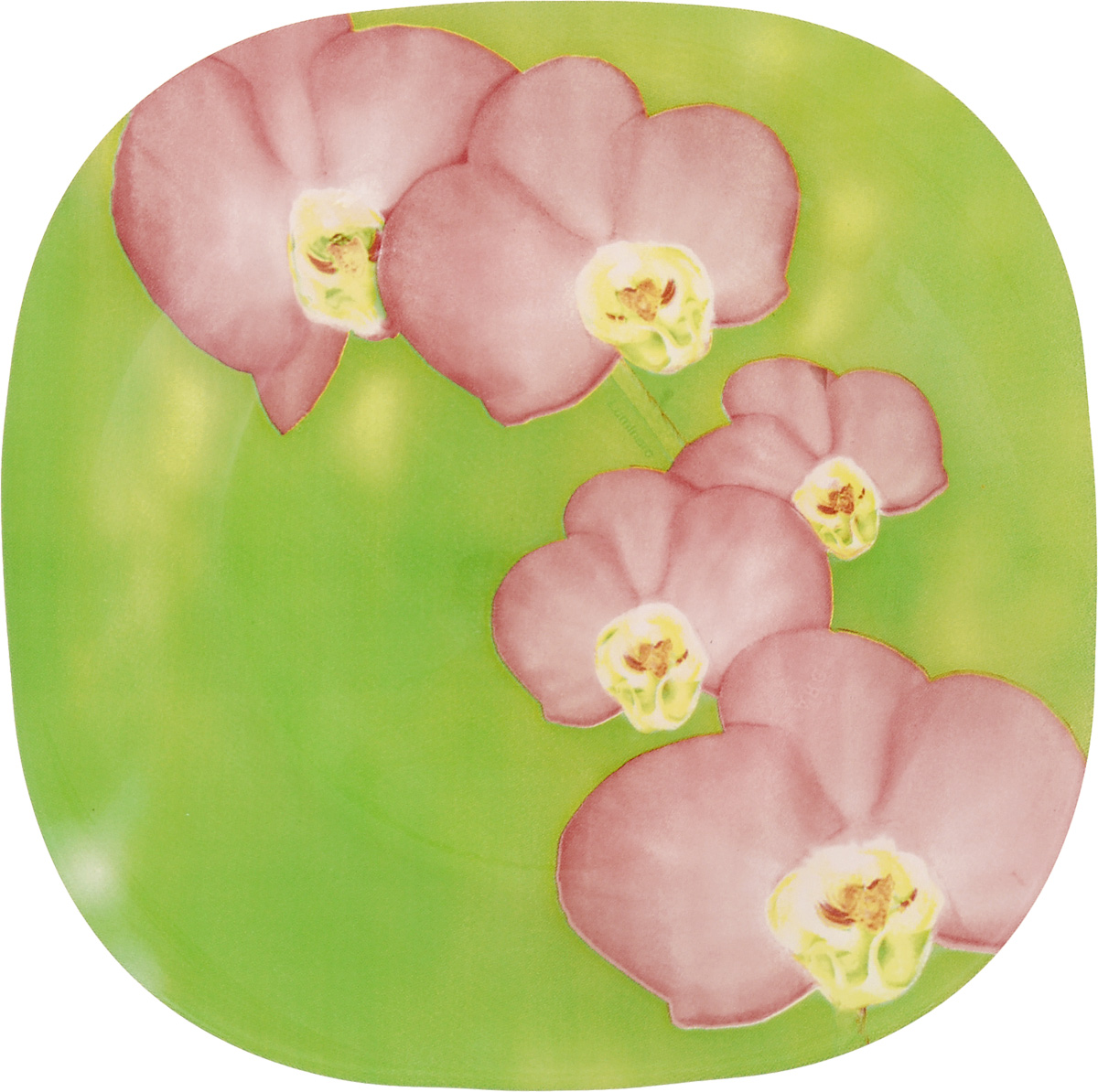 Тарелка десертная Luminarc Carina Erine, 18 х 18 см54 009312Десертная тарелка Luminarc Carina Erine, изготовленная из ударопрочного стекла, декорирована ярким рисунком. Такая тарелка прекрасно подходит как для торжественных случаев, так и для повседневного использования. Идеальна для подачи десертов, пирожных, тортов и многого другого. Она прекрасно оформит стол и станет отличным дополнением к вашей коллекции кухонной посуды. Размер тарелки (по верхнему краю): 18 см.