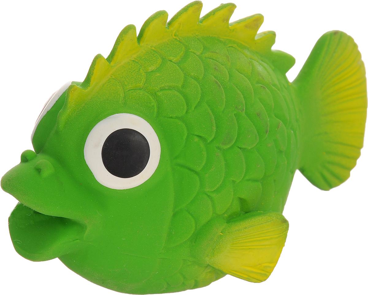Игрушка для собак Beeztees I.P.T.S. Рыбка, цвет: зеленый0120710Игрушка для собак Beeztees I.P.T.S. изготовлена из безопасного латекса в форме забавной рыбки с большими глазами. Игрушка снабжена пищалкой. Предназначена для игр с собаками разных возрастов. Такая игрушка привлечет внимание вашего любимца и не оставит его равнодушным.