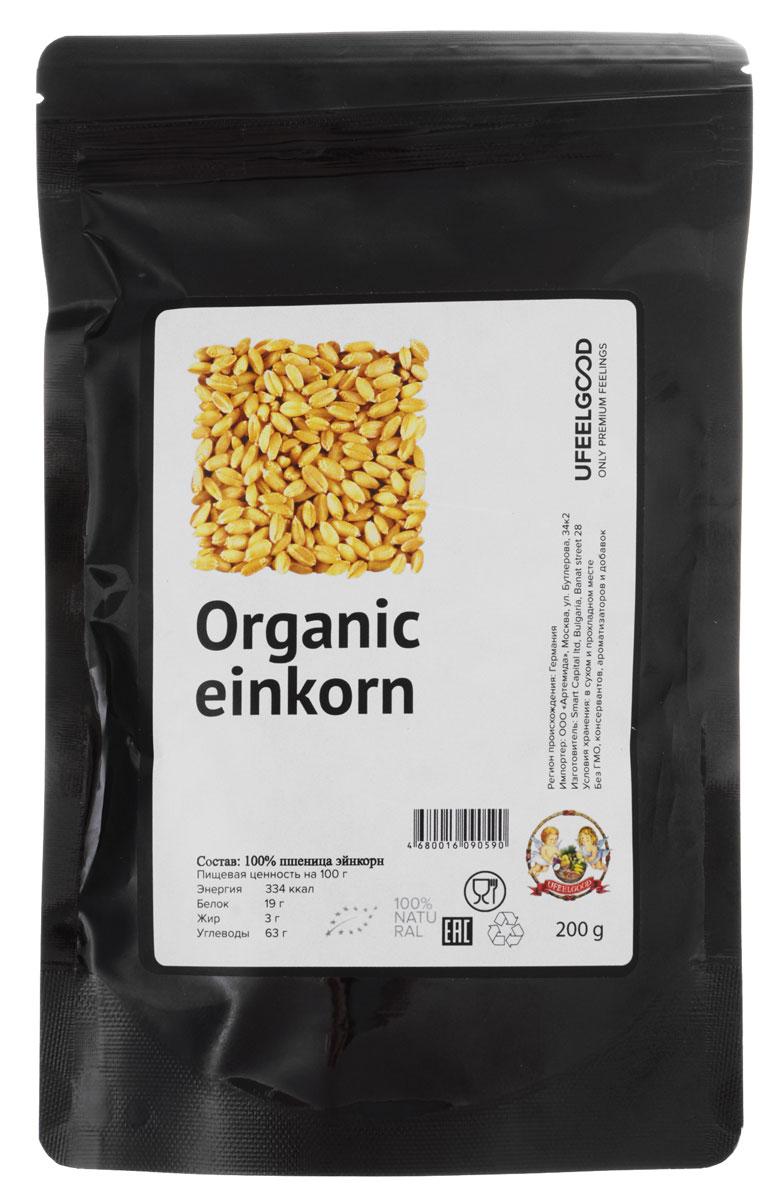 UFEELGOOD Organic Einkorn органическая пшеница эйнкорн, 200 г0120710Einkorn более ароматна и легче усваивается, чем пшеница. Это один из самых древних сортов пшеницы, культивируемых человеком, датируемый около 10000 лет, а также якобы найденный в гробницах Древнего Египта.В Einkorn примерно на 50% больше белка, чем в современной пшенице. Более лучшее усвоение, благодаря своей структуре.В однозернянке в 3-4 раза больше рибофлавина (витамина В2, который стимулирует метаболизм и и всасывания жиров, углеводов и белков), чем современные продукты из пшеницы. В 3-4 раза больше бета-каротина (антиоксидант, который играет важную роль в делении клеток, размножении, роста костей, зрения, здоровья кожи и укрепления иммунной системы). Значительно более высокие уровни витамина А, чем в других сортах пшеницы.Однозернянки также отличный источник минералов, включая цинк, марганец, калий, фосфор и железо.