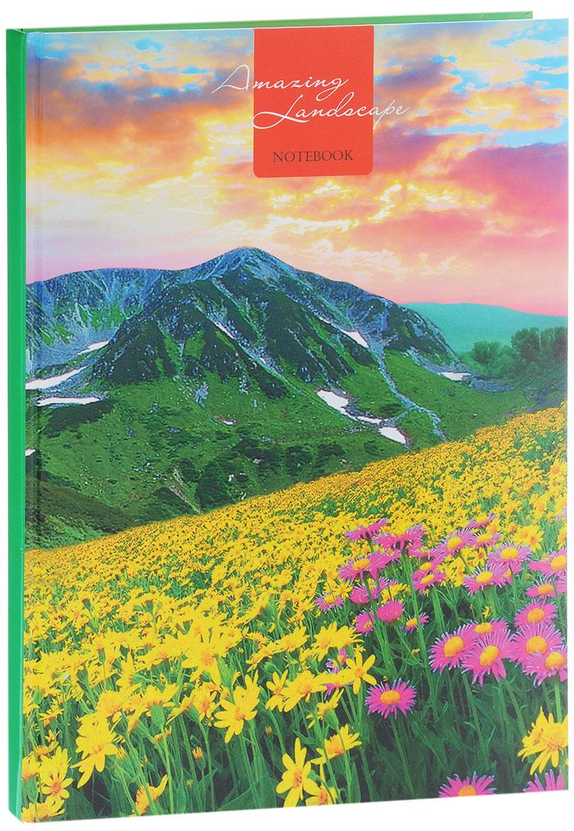 Listoff Записная книжка Цветущая долина 80 листов в клетку72523WDЗаписная книжка Listoff Цветущая долина - незаменимый атрибут современного человека, необходимый для рабочих и повседневных записей в офисе и дома. Записная книжка содержит 80 листов формата А4 в клетку. Обложка, выполненная из плотного картона, оформлена ярким изображением, что обеспечит индивидуальность и визуальную притягательность. А глянцевая ламинация придает блеск обложке. Прошитый внутренний блок гарантирует полное отсутствие потери листов.Записная книжка Listoff Цветущая долина станет достойным аксессуаром среди ваших канцелярских принадлежностей. Она подойдет как для деловых людей, так и для любителей записывать свои мысли, рисовать скетчи, делать наброски.