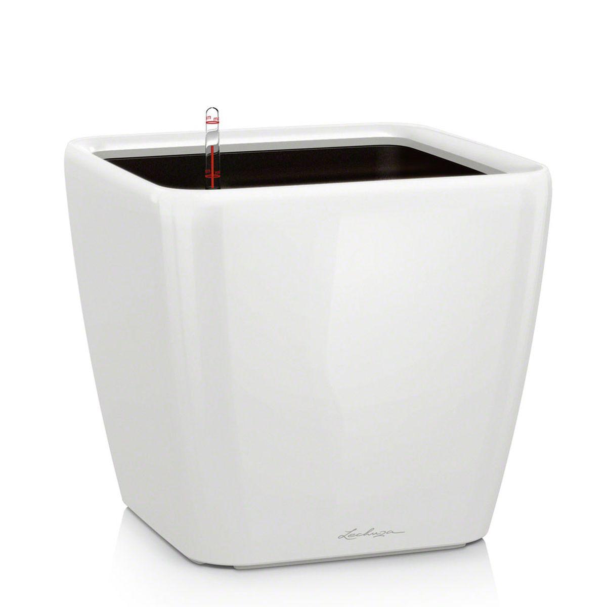 Кашпо Lechuza Quadro, с системой автополива, цвет: белый, 33 х 33 х 35 см16160Кашпо Lechuza Quadro, выполненное из высококачественного пластика, имеет уникальную систему автополива, благодаря которой корневая система растения непрерывно снабжается влагой из резервуара. Уровень воды в резервуаре контролируется с помощью специального индикатора. В зависимости от размера кашпо и растения воды хватает на 2-12 недель. Это способствует хорошему росту цветов и предотвращает переувлажнение.В набор входит: кашпо, внутренний горшок, индикатор уровня воды, вал подачи воды, субстрат растений в качестве дренажного слоя, резервуар для воды.Кашпо Lechuza Quadro прекрасно впишется в любой интерьер. Оно поможет расставить нужные акценты и придаст помещению вид, соответствующий вашим представлениям.