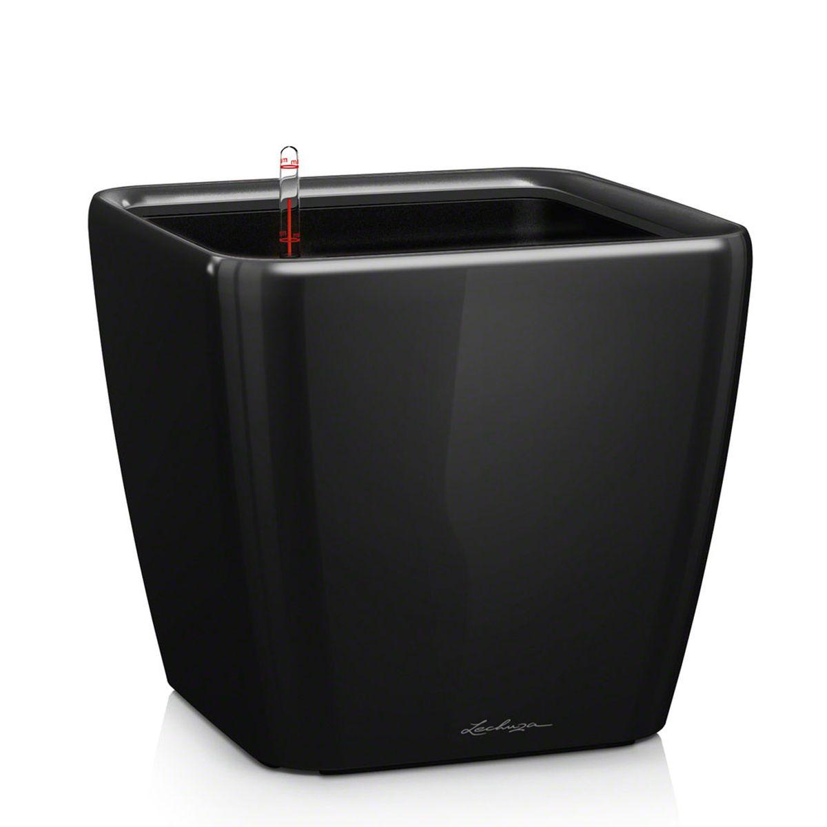 Кашпо Lechuza Quadro, с системой автополива, цвет: черный, 33 х 33 х 35 см16169Кашпо Lechuza Quadro, выполненное из высококачественного пластика, имеет уникальную систему автополива, благодаря которой корневая система растения непрерывно снабжается влагой из резервуара. Уровень воды в резервуаре контролируется с помощью специального индикатора. В зависимости от размера кашпо и растения воды хватает на 2-12 недель. Это способствует хорошему росту цветов и предотвращает переувлажнение.В набор входит: кашпо, внутренний горшок, индикатор уровня воды, вал подачи воды, субстрат растений в качестве дренажного слоя, резервуар для воды.Кашпо Lechuza Quadro прекрасно впишется в любой интерьер. Оно поможет расставить нужные акценты и придаст помещению вид, соответствующий вашим представлениям.
