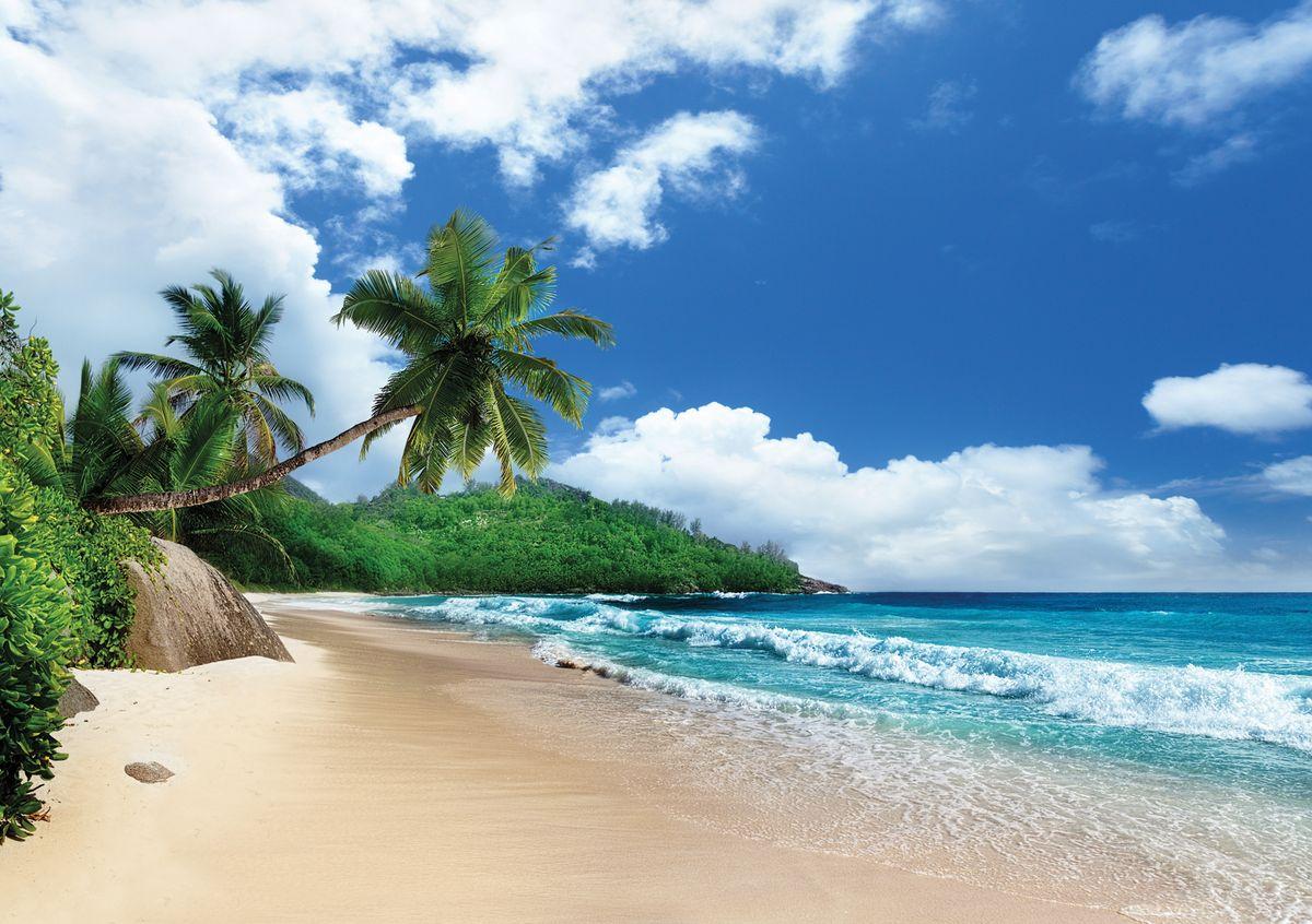 Фотообои Decoretto Побережье острова Маэ. Сейшельские острова, 360 х 254 смБрелок для сумкиФотообои Decoretto Побережье острова Маэ. Сейшельские острова позволят создать неповторимый облик помещения, в котором они размещены. Фотообои наносятся на стены тем же способом, что и обычные обои. Благодаря превосходной печати и высококачественной флизелиновой основе такие обои будут радовать вас долгое время. Фотообои снова вошли в нашу жизнь, став модным направлением декорирования интерьера. Выбрав правильную фактуру и сюжет изображения можно добиться невероятного эффекта живого присутствия.