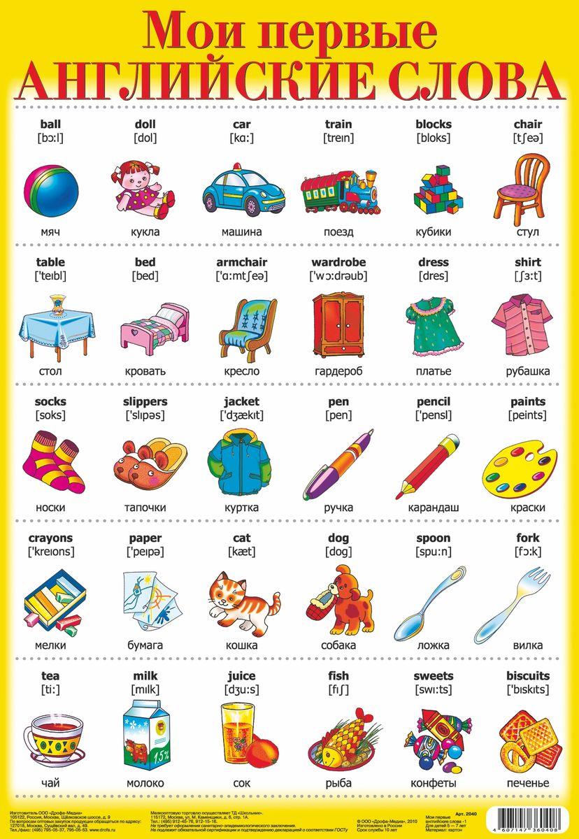 Дрофа-Медиа Обучающий плакат Мои первые английские слова 1
