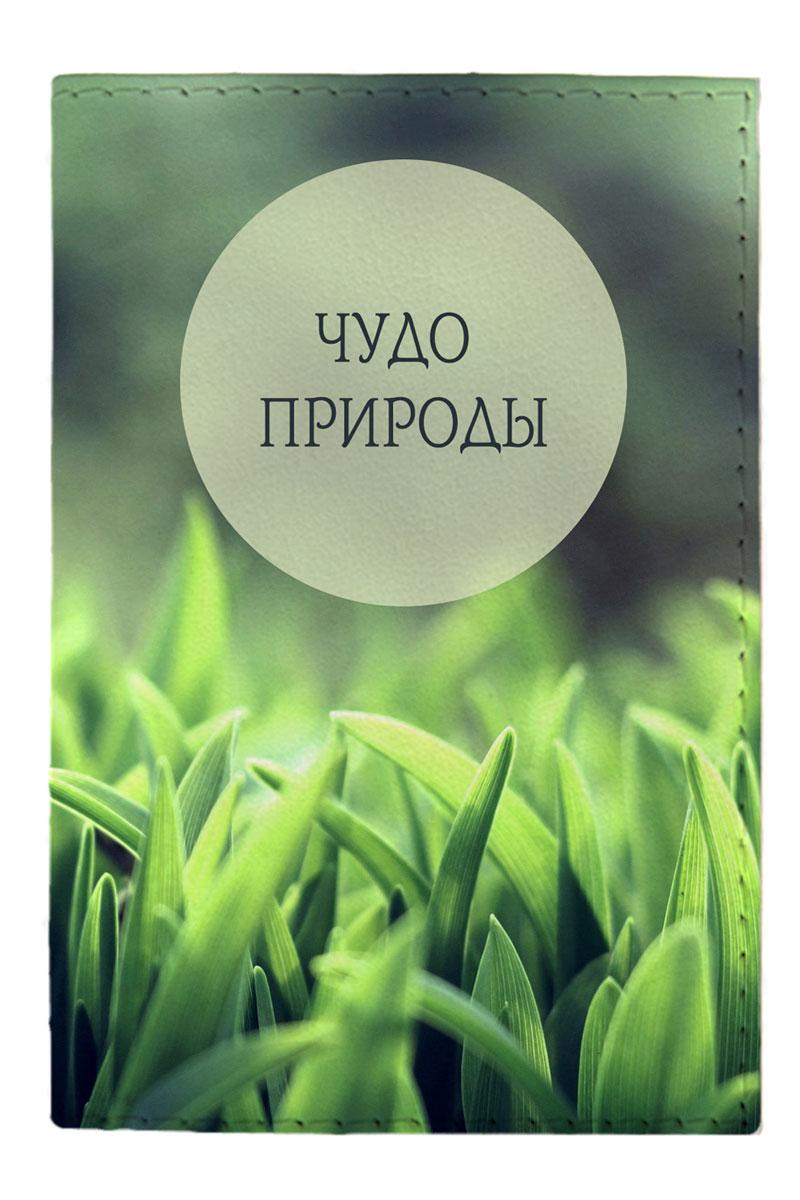 Обложка для паспорта Mitya Veselkov Чудо природы, цвет: зеленый. OZAM390O.1/1.KR. макОбложка для паспорта Mitya Veselkov Чудо природы не только поможет сохранить внешний вид ваших документов и защитить их от повреждений, но и станет стильным аксессуаром, идеально подходящим вашему образу.Она выполнена из поливинилхлорида, внутри имеет два вертикальных кармашка из прозрачного пластика.Такая обложка поможет вам подчеркнуть свою индивидуальность и неповторимость!Обложка для паспорта стильного дизайна может быть достойным и оригинальным подарком.