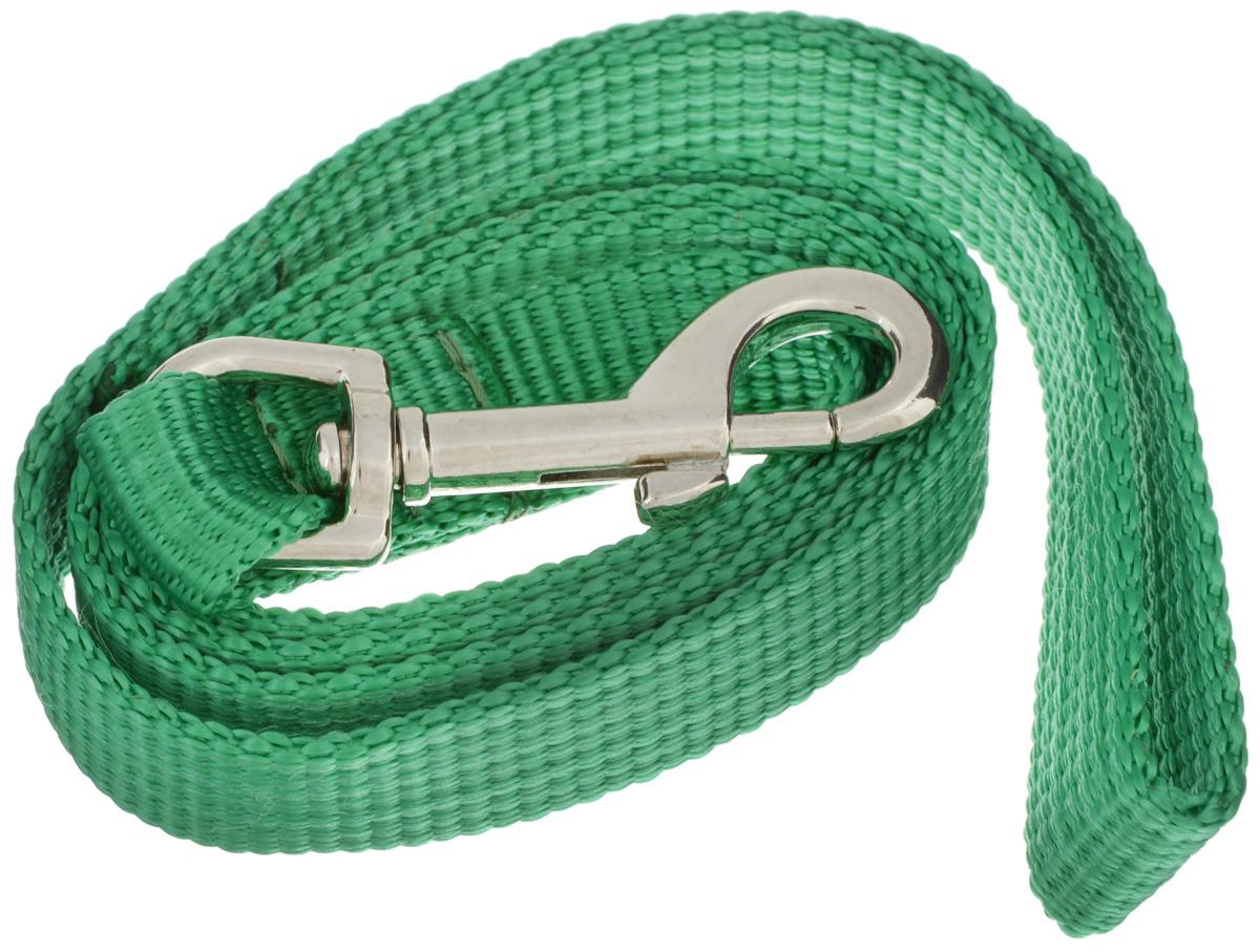 Поводок капроновый для собак Аркон, цвет: зеленый, ширина 2 см, длина 1 м25420Поводок для собак Аркон изготовлен из высококачественного цветного капрона и снабжен металлическим карабином. Изделие отличается не только исключительной надежностью и удобством, но и привлекательным современным дизайном.Поводок - необходимый аксессуар для собаки. Ведь в опасных ситуациях именно он способен спасти жизнь вашему любимому питомцу. Иногда нужно ограничивать свободу своего четвероногого друга, чтобы защитить его или себя от неприятностей на прогулке. Длина поводка: 1 м.Ширина поводка: 2 см.Уважаемые клиенты! Обращаем ваше внимание на то, что товар может содержать светодиодную ленту.