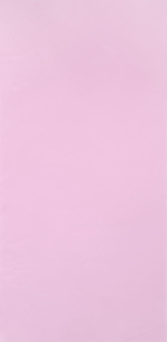 Бумага для папильоток Lainee, пластиковая, цвет: светло-розовый, 31 х 15 см, 250 листов0120710Для выставочной собаки очень важно сохранять в идеальном состоянии волос, для этого необходимо накручивать папильотки.Пластиковая бумага Lainee отличного качества, с правильным срезом без заусениц по краям. Такая бумага подходит для накручивания папильоток у длинношерстных пород собак. С помощью папильоток осуществляется защита длинного остевого волоса от сечения и механического повреждения у длинношерстных декоративных пород.Применять пластиковую бумагу рекомендуется на сухую шерсть (если на шерсть наносится масло, разведенное водой, то перед накручиванием папильоток необходимо подождать высыхания влаги) или поверх обычной бумаги для защиты папильоток от грязи и промокания. Пластиковая бумага не используется на морде. Для папильоток на морде необходимо использовать рисовую бумагу.Размер листа: 31 х 15 см. Комплектация: 250 листов.
