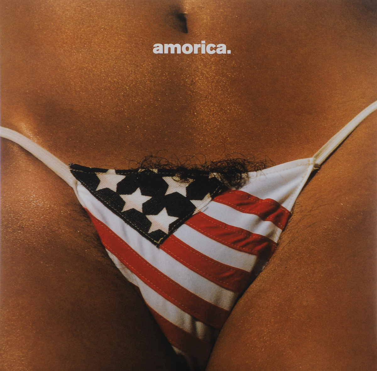 The Black Crowes The Black Crowes. Amorica (2 LP) the black crowes the black crowes three snakes and one charm 2 lp
