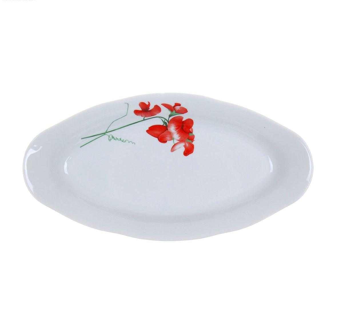 Селедочница Идиллия. Рубин, длина 25 см115510Селедочница Идиллия. Рубин, изготовленная из высококачественного фарфора, оформлена красочным изображением и имеет изысканный внешний вид. Изделие имеет специальную форму, которая идеально подходит для сервировки рыбы, а также нарезок и закусок. Селедочница Идиллия. Рубин великолепно украсит праздничный стол и станет прекрасным дополнением к вашему кухонному инвентарю.