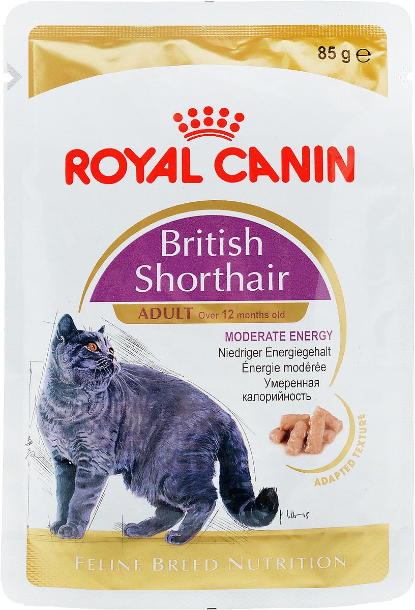 Консервы Royal Canin British Shorthair Adult, для кошек британской породы в возрасте старше 12 месяцев, мелкие кусочки в соусе, 85 г0120710Консервы Royal Canin  British Shorthair Adult специально созданы для британских короткошерстных кошек в возрасте старше 12 месяцев. Британская короткошерстная кошка родом из Великобритании, что явствует из названия породы. Поддержание оптимальной формы. Мощные и коренастые, британские короткошерстные кошки испытывают повышенную нагрузку на суставы в сравнении с кошками меньшего веса. Крупное сердце - риск для здоровья. Эта порода имеет предрасположенность к сердечным заболеваниям. Соблюдение диетических рекомендаций - залог здоровья сердца!Умеренное содержание энергии. У британской короткошерстной кошки мощное плотное телосложение, вследствие чего повышается нагрузка на суставы. Продукт British Shorthair Adult с адаптированным содержанием жира для поддержания оптимального веса.Здоровье мочевыделительной системы. Помогает поддерживать здоровье мочевыделительной системы.Здоровье кожи и шерсти. Помогает поддерживать здоровье кожи и шерсти. Состав: мясо и мясные субпродукты, злаки, рыба и рыбные субпродукты, субпродукты растительного происхождения, экстракты белков растительного происхождения, масла и жиры, минеральные вещества, углеводы. Добавки (в 1 кг): Витамин D3: 265 ME, Железо: 8 мг, Йод: 0,09 мг, Марганец: 2,4 мг, Цинк: 24 мг..Товар сертифицирован.