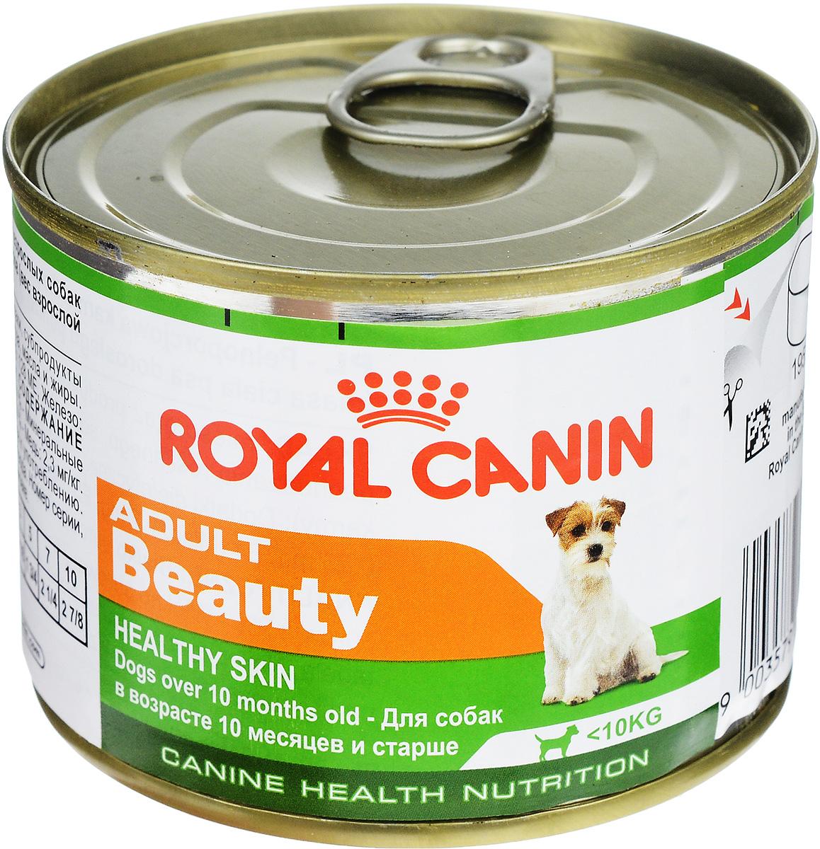 Консервы Royal Canin Adult Beauty, для собак в возрасте 10 месяцев и старше, 195 г0120710Консервы Royal Canin Adult Beauty создан специально для взрослых собак с 10 месяцев и старше, весом до 10 кг. Предназначен для поддержания здоровья шерсти и кожи.Формула Beauty обогащена жирными кислотами и содержит специальный защитный комплекс. Состав: мясо и мясные субпродукты, злаки, субпродукты растительного происхождения, минеральные вещества, масла и жиры. Гарантированный анализ: белки - 9,6 %, жиры - 6,4 %, минеральные вещества - 2 %, клетчатка пищевая - 2 %, влажность - 74 %, медь - 2,3 мг/кг.Добавки (в 1 кг): витамин D3: 128 ME, железо - 15 мг, йод - 0,25 мг, марганец - 4,4 мг, цинк - 43 мг. Товар сертифицирован.