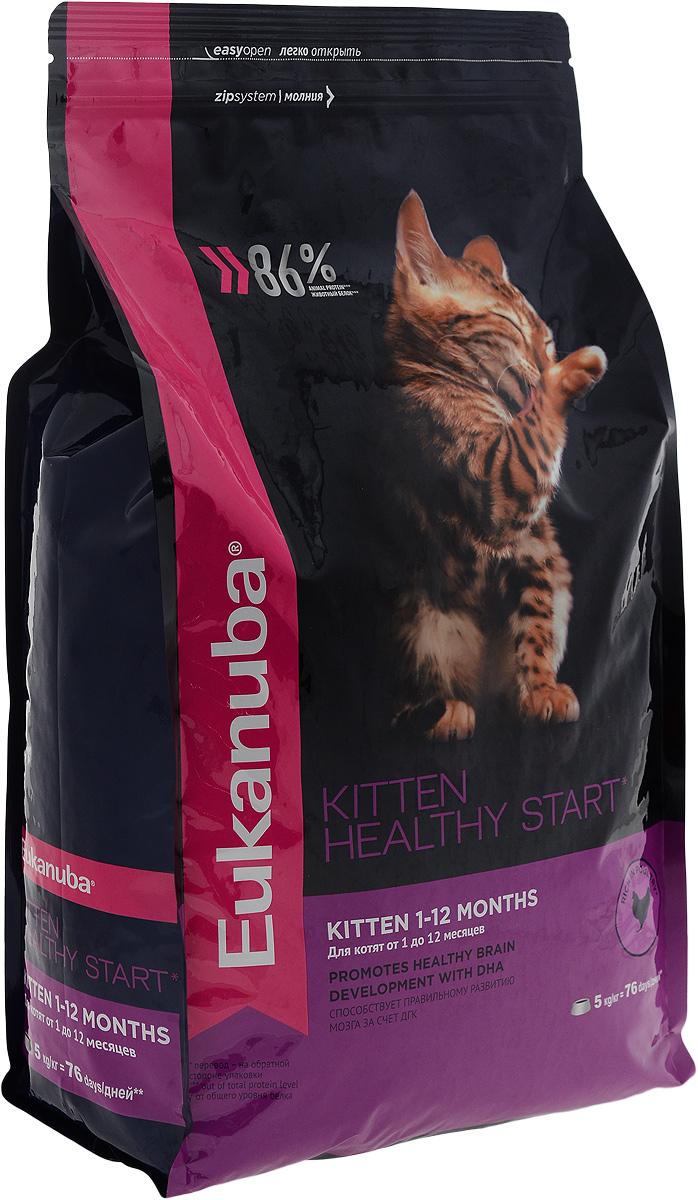 Корм сухой для котят Eukanuba Kitten Healthy Start, с домашней птицей, 5 кг0120710Сухой корм Eukanuba Kitten Healthy Start - полнорационный сухой корм для котят от 1 до 12 месяцев и беременных или кормящих кошек.Корм Eukanuba для котят содержит докозагексаеновую кислоту, способствующую правильному развитию мозга котят. 100% сбалансированный корм, поддерживает здоровье котенка по ключевым признакам и обеспечивает здоровый рост. 1. ЗДОРОВЫЙ РОСТПоддерживает здоровый рост организма за счет сбалансированного высококачественного питания.2. НАДЕЖНАЯ ЗАЩИТАСпособствует поддержанию иммунной системы за счет антиоксидантов.3. ОПТИМАЛЬНОЕ ПИЩЕВАРЕНИЕСпособствует поддержанию здоровой кишечной микрофлоры за счет пребиотиков и клетчатки.4. СИЛЬНЫЕ МЫШЦЫБелки животного происхождения способствуют росту и сохранению мышечной массы. Содержит 86% животного белка (от общего уровня белка).5. ЗДОРОВЬЕ КОЖИ И ШЕРСТИСпособствует сохранению здоровья кожи и блестящей шерсти, благодаря рыбьему жиру и оптимальному соотношению омега-6 и омега-3 жирных кислот.6. ЗДОРОВЫЕ ЗУБЫПоддерживает здоровье зубов. Состав: белки животного происхождения (домашняя птица 43%, источник натурального таурина), жир животный, ячмень, пшеница, пшеничная мука, рис, сухое цельное яйцо, гидролизированный животный белок, пульпа сахарной свеклы, рыбий жир, фрукто-олиго-сахариды, высушенные пивные дрожжи, минералы. Пищевая ценность (100 г): белки - 36 г, жиры - 24 г, омега-6 жирные кислоты - 3,23 г, омега-3 жирные кислоты - 0,64 г, влажность - 8 г, зола - 7,0 г, клетчатка - 1,4 г, кальций - 1,61 г, фосфор - 1,25 г, магний - 0,09 г.Добавленные вещества: витамин A: 21000 МЕ/кг, витамин D3: 1000 МЕ/кг, витамин E: 260 мг/кг, железо: 178 мг/кг, йод: 3,2 мг/кг, медь: 15 мг/кг, марганец: 61 мг/кг, цинк: 182 мг/кг, селен: 0,48 мг/кг, докозагексаеновая кислота: 0,1 г/кг. Энергетическая ценность (100 г): 437 ккал/1830 кДж. Товар сертифицирован.