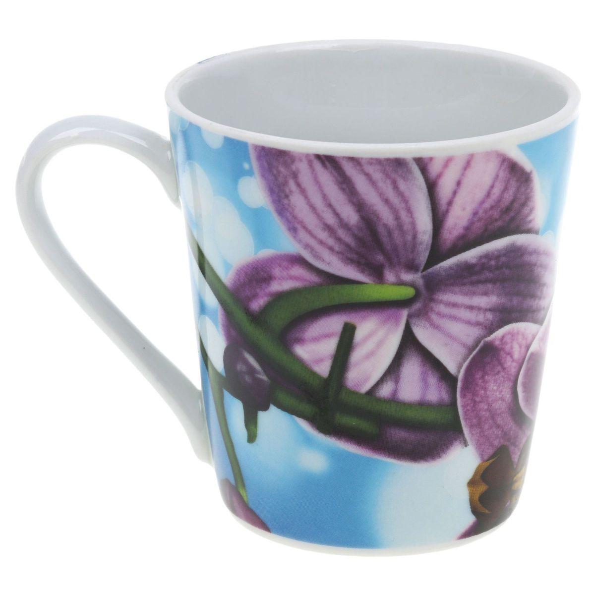 Кружка Классик. Орхидея, цвет: голубой, 300 мл68/5/4Кружка Классик. Орхидея изготовлена из высококачественного фарфора. Внешние стенки изделия оформлены красочным рисунком. Такая кружка прекрасно подойдет для горячих и холодных напитков. Она дополнит коллекцию вашей кухонной посуды и будет служить долгие годы.