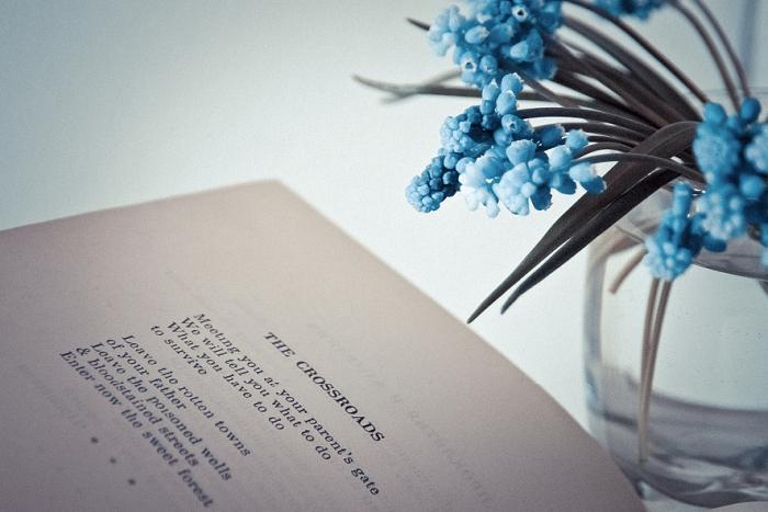 Открытка The crossroads. Автор Вероника Дорофеева38387Оригинальная дизайнерская открытка «The crossroads» выполнена из плотного матового картона. На лицевой стороне расположена репродукция фото-работы Вероники Дорофеевой с букетом цветов и книгой.Такая открытка станет великолепным дополнением к подарку или оригинальным почтовым посланием, которое, несомненно, удивит получателя своим дизайном и подарит приятные воспоминания.